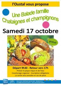 Chataignes-et-champignons-2015-10-17-724x1024